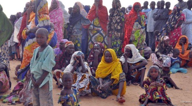 Boko Haram já desalojou mais de um milhão de crianças na Nigéria