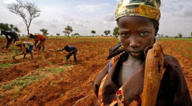 Cristãos são esquecidos pelo governo do Níger