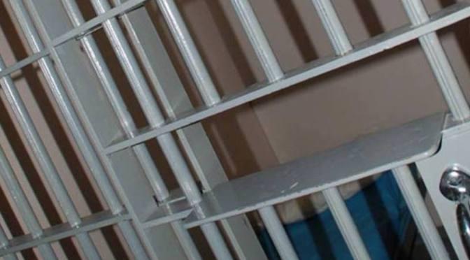 Anistia Internacional: Mulher palestina torturada na prisão da Autoridade Palestina